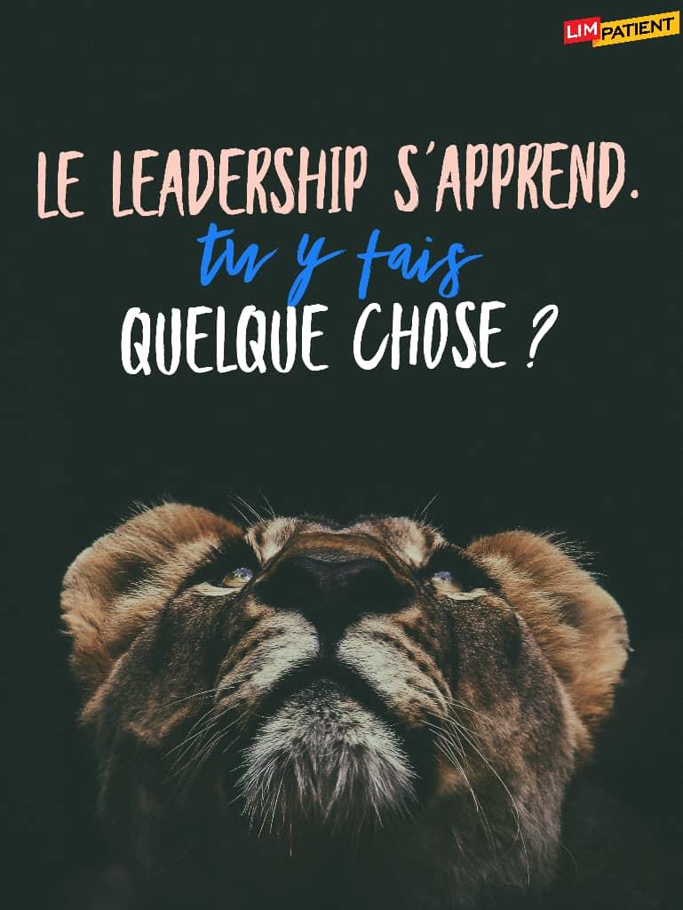 comment developper ton leadership